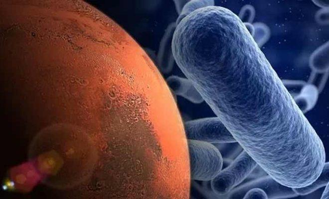 Vie sur Mars : Nous nous rapprochons de la solution du mystère du méthane : « Est-il biologique ? »