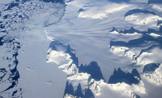 Les restes d'un monstre marin découverts en Antarctique