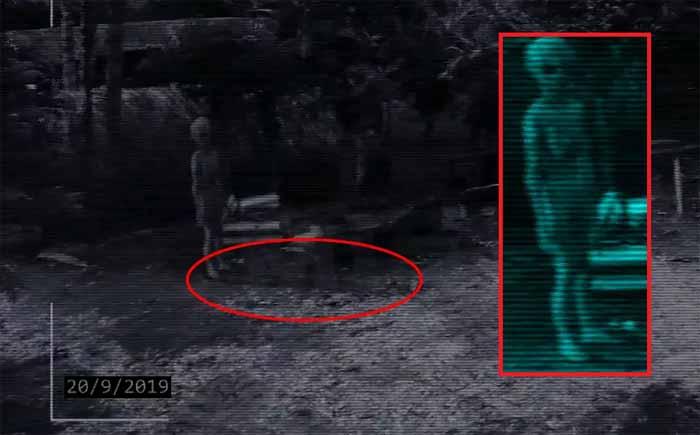 Un extraterrestre a été filmé dans une ferme au Mexique