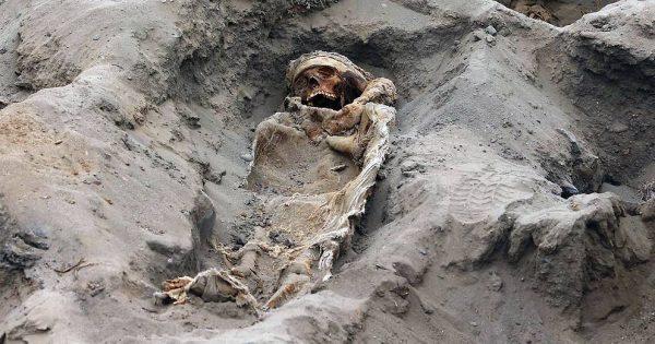 Les restes de centaines d'enfants sacrifiés découverts au Pérou