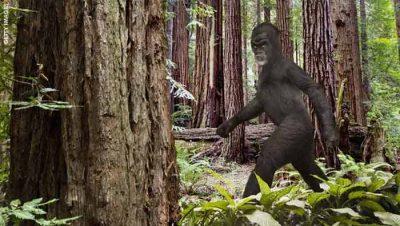Ohio: Tentative d'effraction par un Bigfoot ?