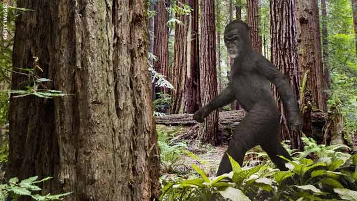 Ohio: Tentative d'effraction par un Bigfoot ?