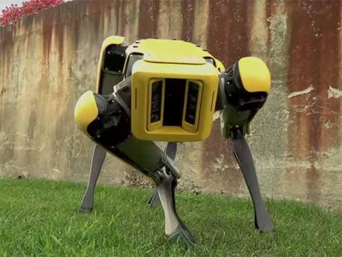 La police de Boston s'apprêtent à lâcher un chien robot sur la populace