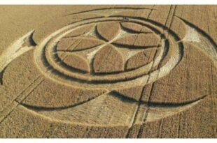 Crop circle: La croix des Templiers apparaît dans un champ français