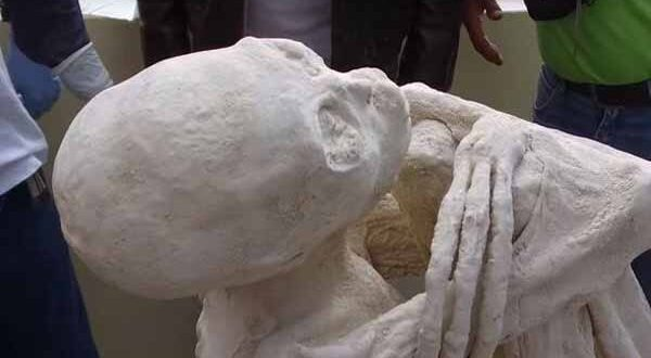 La Momie Extraterrestre découverte au Pérou pourrait être une 'NOUVELLE ESPÈCE humaine