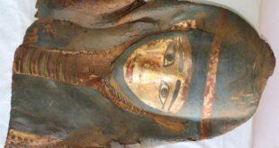 Mise au jour du temple funéraire de la reine Néarit à Saqqarah